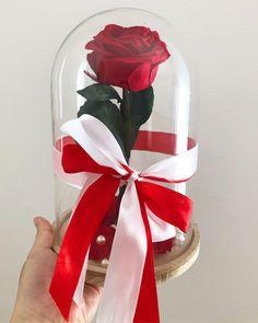 Snow Globes, Flowers, Home Decor, Decoration Home, Room Decor, Royal Icing Flowers, Home Interior Design, Flower, Florals