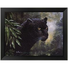 Black Panther Framed Art Print by Don Balke (36.005 CLP) ❤ liked on Polyvore featuring home, home decor, wall art, black, framed wall art, horizontal wall art, black framed wall art, black wall art and black home decor