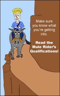Take a Ride down the Grand Canyon (Grand Canyon Mule Rides)