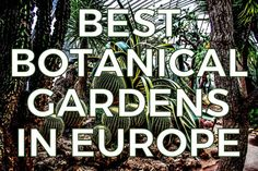 30 Beautiful Botanical Gardens in Europe Do you like to visit botanical gardens as an activity on your vacations? Here are our favorite botanical gardens and greenhouses in Europe and what makes them extra special. #glasshouses #greenhouses #botanical #gardens #europe #travelguide