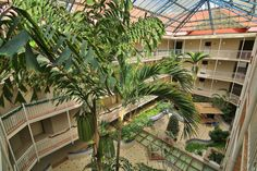 Before: This was the plush atrium in the waterfront Beach Plaza Hotel in St Martin before Irma struck on Wednesday Hotel Restaurant, Plaza Hotel, All Over The World, Around The Worlds, Outre Mer, Hotel Suites, Turks And Caicos, Cafe Bar, British Virgin Islands