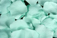 aquamarine rose petals