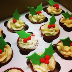 Christmas cupcakes: red velvet cake with cream cheese icing; fondant holly leaves and berries.
