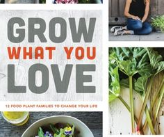 Vegetables to Plant in August for Fall & Winter Harvests | Angie The Freckled Rose Fall Vegetables To Plant, Growing Vegetables, Garden Design Magazine, Summer Flowers, Flowers Garden, Allium Flowers, Fall Crops, Scented Geranium, Garden Show