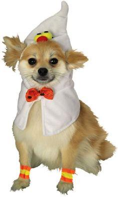 Aus der Kategorie Verkleidungen & Kostüme  gibt es, zum Preis von EUR 54,16  Jetzt können Ihre vierbeinigen Familienmitglied Join the fun. Mit einem Tier Kostüm von Rubies, Hunde werden bereit für eine Modenschau, Parteien, oder um einfach nur Spaß zu haben. 'Rubies Costume Company wurde die Schaffung Tier Kostüme seit 1950, natürlich erinnern Sie an.<br/>