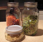 Storing Dehydrated Food - for the Long-term