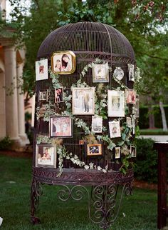 Photo birdcage decor  leafy vines