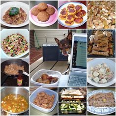 Home made dog food and dog treats - even have wheat free recipes