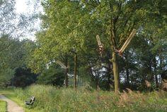 Bart Ensing. 'Wortelen en loslaten'. Een installatie voor Landart Diessen 2014. Een boom is voor ons een voorbeeld van geaard, geworteld zijn. Een boom staat stevig in de grond, groeit, reikt omhoog, maar verliest nooit het contact met de aarde. Behalve hier. Kan het samengaan, goed geworteld zijn en toch loslaten, loskomen? Of wordt het zweverig? En hoe is dat voor mensen, voor u? Landart Diessen kan bezocht worden van 6 t/m 21 september 2014.