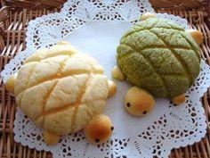 Kawaii tortoise buns