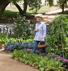 This is a very nice and perfect looking ornamental vegetable garden from the movie 'It's Complicated' with Meryl Streep.