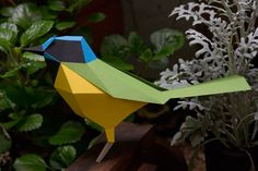 oiseau-vert-jaune