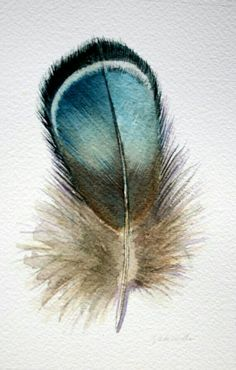 jodyvanB…I wonder where this feather came from? – Margaret Carey jodyvanB…I wonder where this feather came from? jodyvanB…I wonder where this feather came from? Watercolor Feather, Feather Painting, Feather Art, Watercolor Paintings, Watercolour, Blue Feather, Bird Feathers, Art And Illustration, Feather Illustration