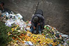 Reducing Food Waste Could Curb Climate Change: A new study predicts that wasted food could increase greenhouse gas emissions by mid-century.