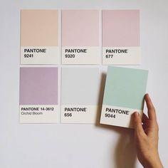 Image de pantone, pastel, and aesthetic Pantone Colour Palettes, Pastel Colour Palette, Colour Pallette, Pantone Color, Colour Schemes, Pastel Colors, Soft Pastels, Bedroom Color Palettes, Aesthetic Colors