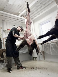 My first wild boar. Sweden. Used it for my #masterchefdk audition dish