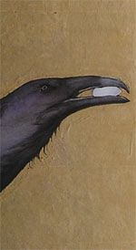 raven with egg Jackie Morris