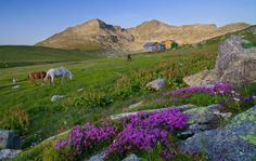 Levski Hut in Stara Planina mountain, Bulgaria