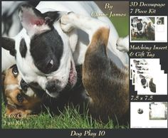 Furry Friends   Familiars   Dog Play 10   Pyrimage pyramid   Insert   Tag on Craftsuprint - View Now!