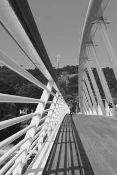 ponte della musica #Rome  modern architecture