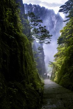 In the Mountains of Huangshan, China by  杨 昊天