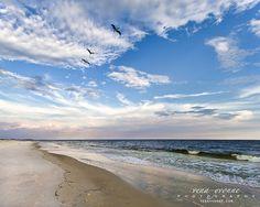 coastal fine art print wall hanging beachdune by photographybyVena, $25.00