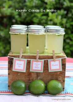 Simple Cinco de Mayo Party ideas with free printables by Amy at LivingLocurto.com  Limeade with 7up for us...but love the serving idea!