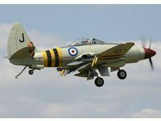 Ww2 Aircraft, Military Aircraft, Westland Wyvern, Propeller Plane, Aircraft Painting, P51 Mustang, Aircraft Design, Aviation Art, Royal Navy