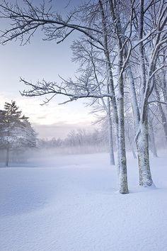 Fresh snow | Flickr - Photo Sharing!