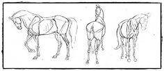25 belos desenhos de animais para a sua inspiração 5