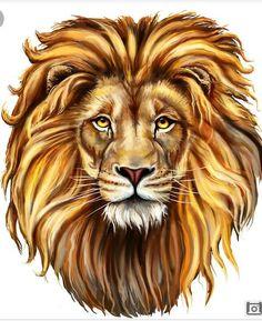 Design Art Animal 'King Lion Aslan Animal' Graphic Art Format: Wrapped Canvas, Size: H x W x D Animal Graphic, Graphic Art, Canvas Art Prints, Painting Prints, Canvas Artwork, Lion Drawing, Lion Painting, Lion Art, True Art