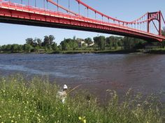 Puente Colgante Necochea - Quequén