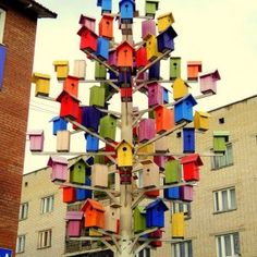 wow - hope it attracts lots of birds!
