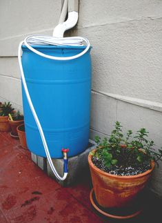 Gonna make this as soon as i get the hardware and check if its legal! :) How To: Make a Rainwater Collection Barrel. Note: Make sure this is legal to do in your state. In Colorado, it's mostly illegal to save rainwater. Organic Gardening, Gardening Tips, Organic Herbs, Rain Barrel System, Water Collection, Rainwater Harvesting, Water Storage, Water Conservation, Outdoor Projects