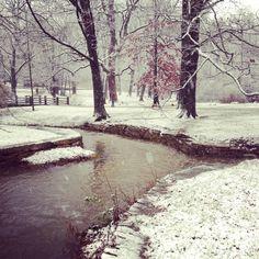 Winter 2012. Indiana University. Bloomington, Indiana