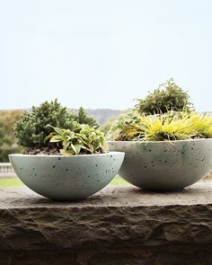 Hypertufa pots. Homemade pots made three ingredients. Perlite, Portland cement and peat moss. I have to try this.