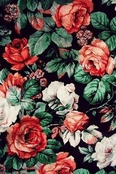 Sil Scheifer rose pattern print background