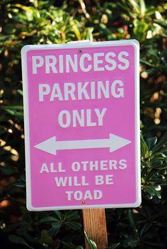 Nico and LaLa: Calling all Princesses!!!