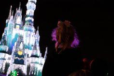Disney World, Orlando FL