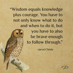 """""""Wisdom equals knowledge plus courage. You have to not only know what to do and when to do it, but you have to also be brave enough to follow through."""" ~ Jarod Chintz"""