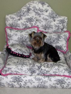 Use soft, durable fabric to create a custom dog bed with personality! Use colors and patterns that work well with the decor of the room. > http://www.hgtv.com/handmade/decor-for-your-furry-friend/pictures/index.html?soc=pinterest
