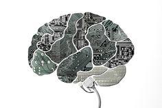 Cerveau suite