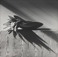 Happy First Day of Spring! Parrot Tulips by Robert Mapplethorpe. 1988.