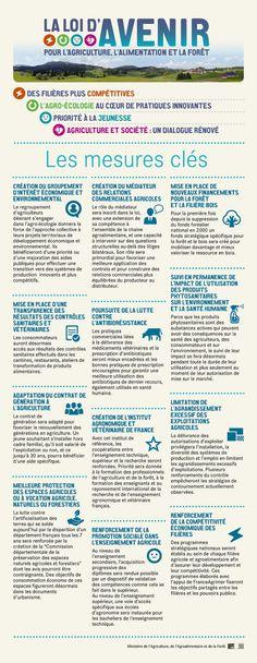 Service d'Information du Gouvernement (SIG) - Gouvernement.fr