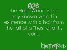 That is interesting, and makes perfect sense since a thestral can only be seen by someone who has seen death, and Death creates the Elder Wand.