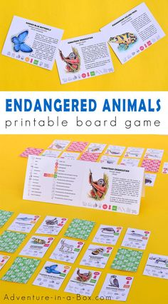 Our Endangered Animals game introduces kids to the topic of endangered species, threats to their survival, and efforts being made to protect them. Creative Activities For Kids, Kid Activities, Creative Kids, Karner Blue Butterfly, Rare Animals, Strange Animals, Printable Board Games, Free Printable, Writing Prompts For Kids