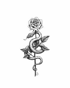 Spine Tattoos, Dope Tattoos, Pretty Tattoos, Body Art Tattoos, Sleeve Tattoos, Woman Tattoos, Tatoos, Small Snake Tattoo, Small Tattoos