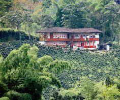 Eje cafetero: un destino que no deja de sorprender Coffee Farm, Farm Cottage, Natural Park, Sense Of Place, Tropical Houses, Countries Of The World, Shades Of Green, Landscape Design, Beautiful Places