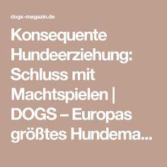 Konsequente Hundeerziehung: Schluss mit Machtspielen   DOGS – Europas größtes Hundemagazin