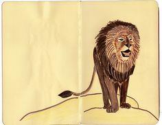 Lion #leo #lion